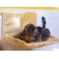 Wholesale Cat Sky Climber Hanging Warm Portable Foldable Cushion Cat Bed